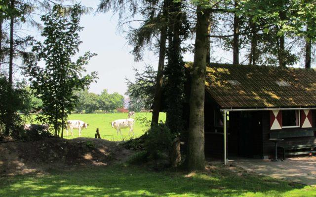 Grillhütte OstfrieslandFerienVilla